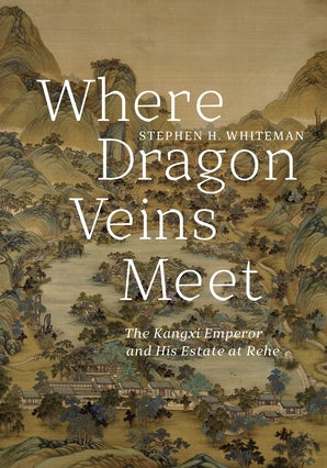Where Dragon Veins Meet book image