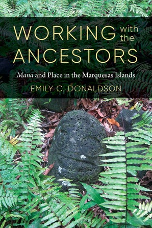 Working with the Ancestors book image