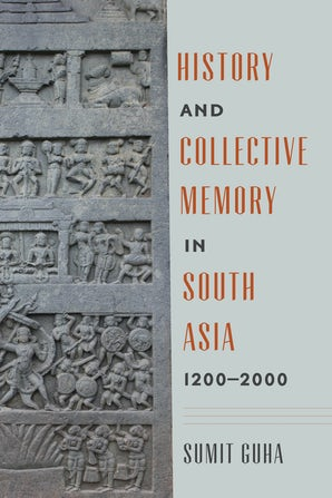 History and Collective Memory in South Asia, 1200–2000 book image