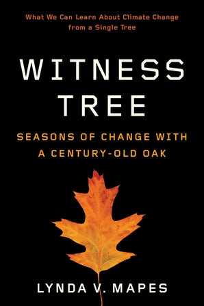 Witness Tree book image