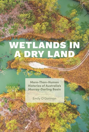 Wetlands in a Dry Land book image
