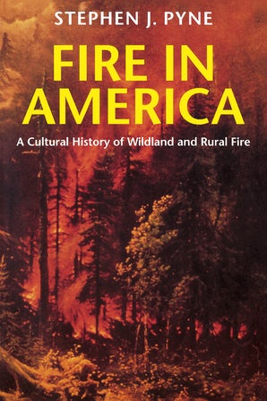 Fire in America book image