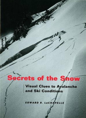 Secrets of the Snow book image