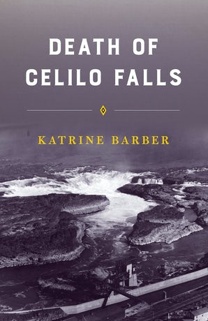 Death of Celilo Falls book image