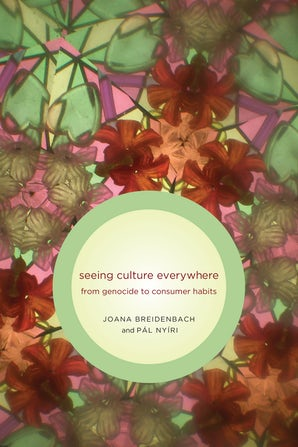 Seeing Culture Everywhere book image
