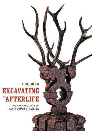 Excavating the Afterlife book image