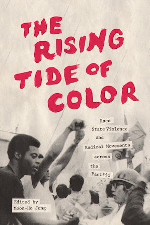 The Rising Tide of Color book image